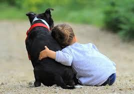 El Ayuntamiento emite recomendaciones a los propietarios de mascotas con las medidas de prevención ante la pandemia de COVID-19